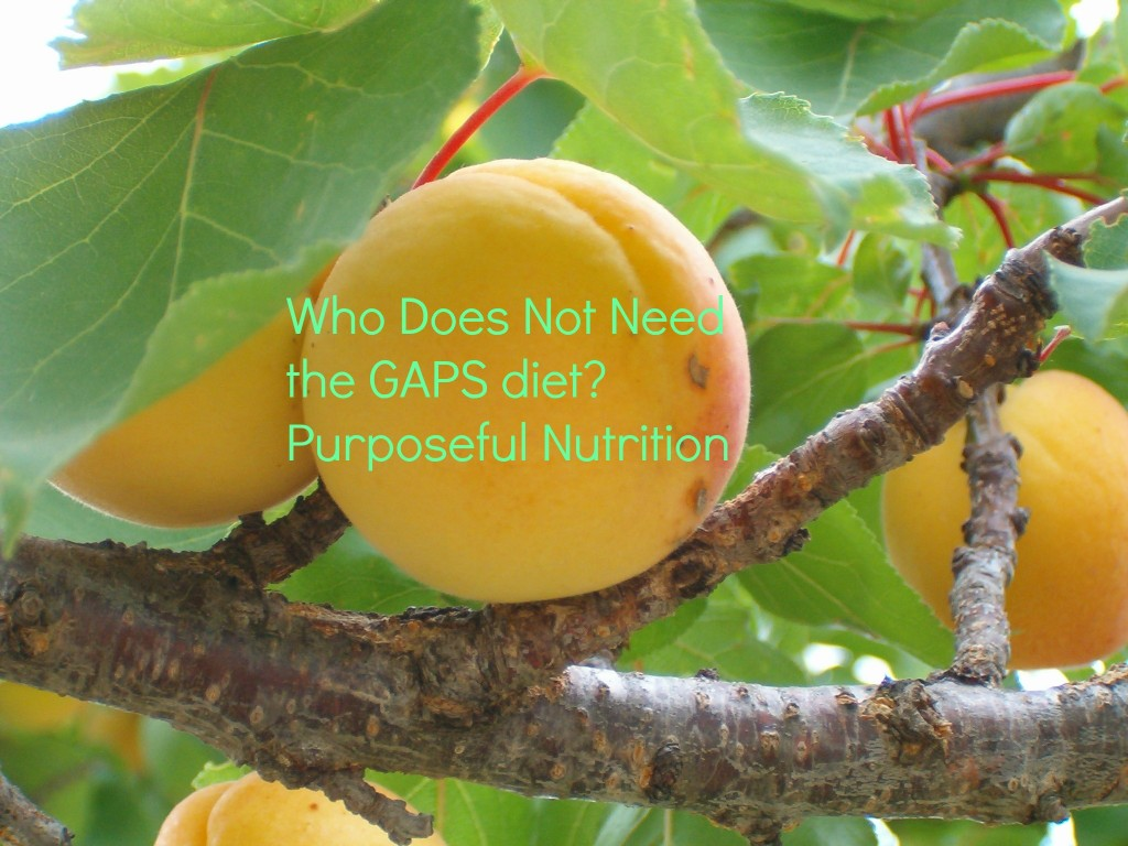 Who Does Not Need the GAPS Diet?