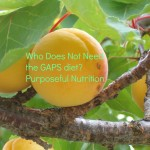 Who Does Not Need the GAPS Diet? - Purposeful Nutrition