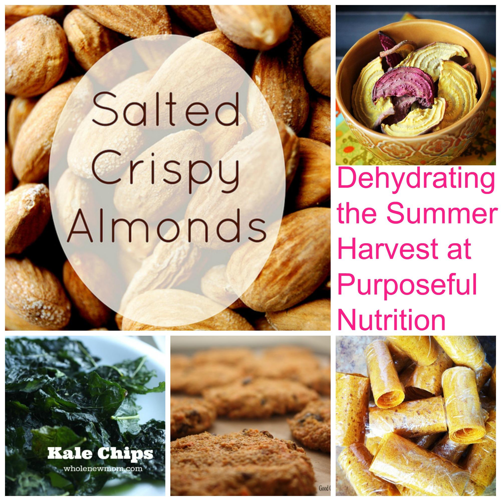 Dehydrating the Summer Harvest:  Purposeful Nutrition