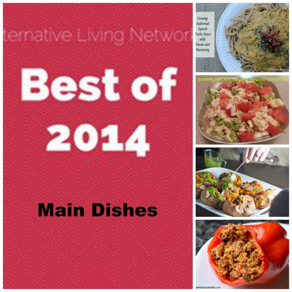 Best of ALN 2014 – Main Dishes