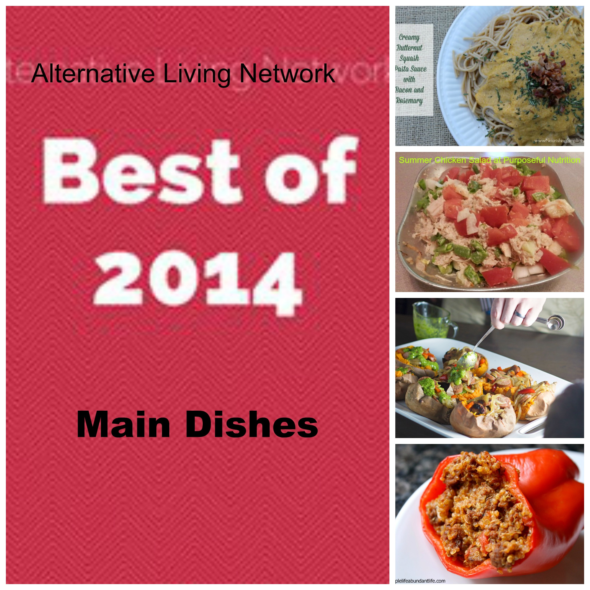 Best of ALN Main Dishes