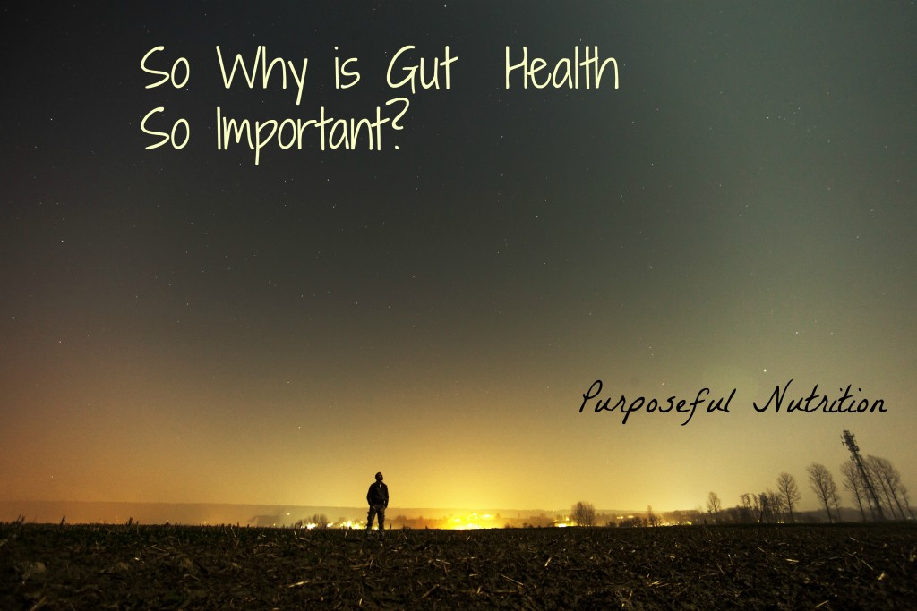 So Why is Gut Health So Important?