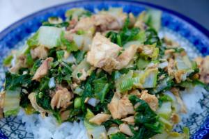 grilled napa cabbage chicken stir fry landscape
