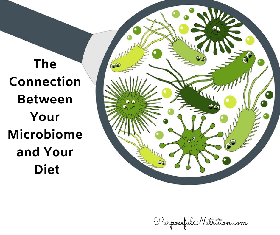 The Connection Between Your Microbiome And Your Diet