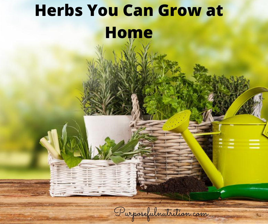 Herbs You Can Grow At Home That Make Great Natural Remedies